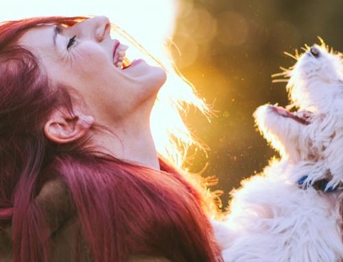 Hipérico: la solución natural a la depresión