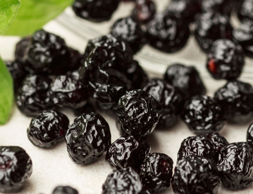 Maqui, la baya antioxidante